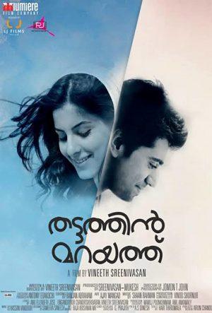 Thattathin Marayathu (2012)-cinemabaaz.xyz