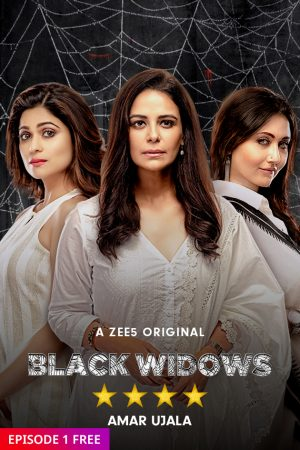 Black Widows (Season 1 Complete) cinemabaaz.xyz
