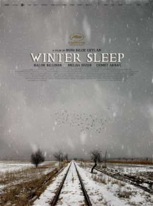 Winter Sleep (2014) cinemabaaz.xyz