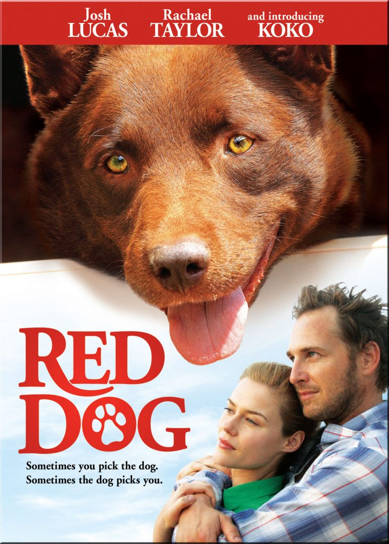 Red Dog (2011) cinemabaaz.xyz